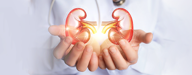The Essential Facts About Chronic Kidney Disease You Need To Know